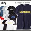 【メール便をご指定で送料無料】STUSSY Tシャツ【H-141~H-159】ステューシー T-SHIRTS メンズ stussy tシャツ