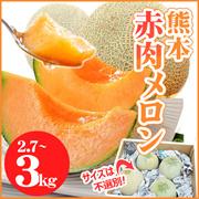 今が旬!!【タイムセール特価】熊本ブランド赤肉のあま~いメロン《熊本県産 ご自宅用赤肉メロン 約2.7~約3kg前後 送料無料》日本有数の産地、熊本県産の赤肉メロンです。あふれる果汁、芳醇な香り、とろける食感をお愉しみください。