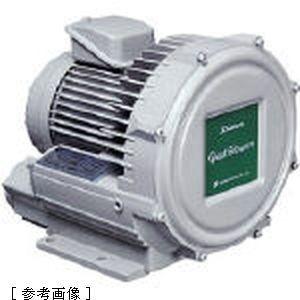 【クリックで詳細表示】昭和電機 昭和電機 電動送風機 渦流式高圧シリーズ ガストブロアシリーズ(0.4kW) U2V40S
