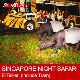 Singapore Night Safari E-Ticket  (Admission + Tram Ride)  新加坡夜间动物园门票(含游园车)