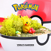 [ Pokemon GO Terrarium ] by TAKARA TOMY JAPAN / Charmander / Terrarium Decoration / Potted Plant Accessories / Planter Decor / DIY Gift / Home Decor / Gardening / Live Moss