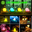 Creative Cute Bird Cage/Fairy/ Scarecrow Night LED Lamp. Touch Sensor Activated. 4 Colors Available