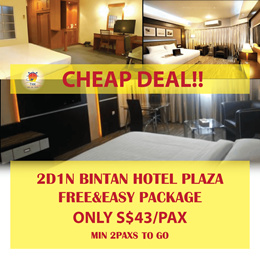 2D1N Bintan PLAZA Hotel FREE AND EASY PACKAGE(MIN 2PAXS TO GO)