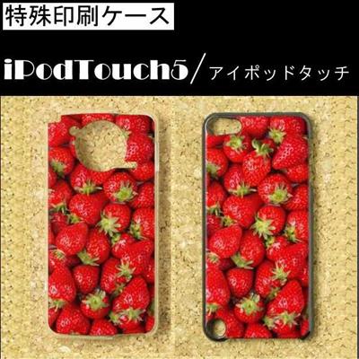 特殊印刷/iPodtouch5(第5世代)iPodtouch6(第6世代) 【アイポッドタッチ アイポッド ipod ハードケース カバー ケース】 (ストロベリー)CCC-020の画像