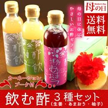 【母の日】【送料無料】「酢飲」柚子・博多あまおう・生姜セット(カーネーション造花付き)