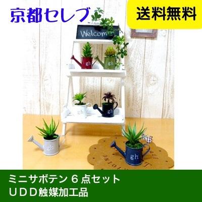 ●代引き不可送料無料人口観葉植物 ミニサボテン6点セット(秋の装飾・デイスプレイに)99999の画像