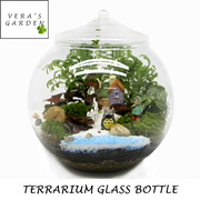 [ Terrarium Glass Jar ] Mini Glass / Home Decor / Glass Bottle / Craftholic / Art and Craft