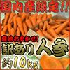 """◆【送料無料】国内産限定!産地おまかせ 訳あり """"にんじん""""約10kg"""