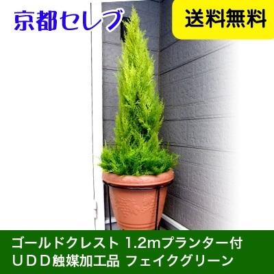 ●代引き不可送料無料人工観葉植物 ゴールドクレスト1.2mプランター付 フェイクグリーンプランター(クリスマスの飾り木に)99999の画像