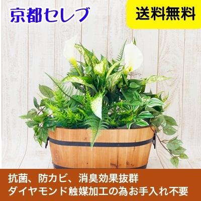 ●代引き不可送料無料人工観葉植物 造花  触媒加工品 オフィスグリーン フェイクグリーン(オフィスや店舗の装飾に)91501の画像