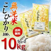 🌟クーポン使えます!【送料無料】無洗米コシヒカリ!!【5kg×2】こしひかり100% 10kg 【一部地域は追加送料】