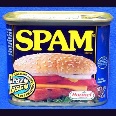 スパム レギュラー 340g 1缶 SPAM ポークランチョンミート オリジナルの画像