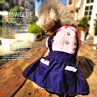 宠物衣服狗狗衣服秋装裙子可爱泰迪