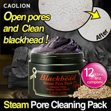 [Caolion] PREMIUM line - Pore Cleaning Steam Pack!(100g)/3011-a000