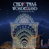 [Christmas Special]Gardens by the bay Christmas Wonderland 滨海湾花园 (Flower Dome + Cloud Forest)