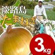 【送料無料】淡路島玉ねぎ 3kg☆ サイズ・個数お任せ★【タマネギ】【たまねぎ】【タマネギ】【たまねぎ】