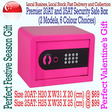 ***Perfect Christmas and Valentines Day Gift*** Premier Color Security Safe Boxes (2 Models 6 Color Choice)