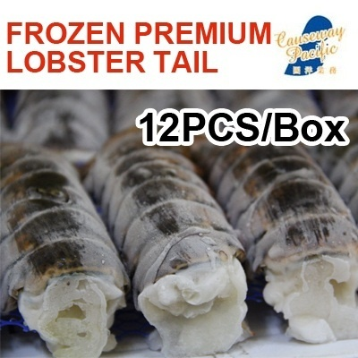 [BEST Seller]FROZEN PREMIUM GRADE LOBSTER TAIL / rich in Omega-3 fatty acids - FROM THE BEST SEAFOOD WHOLESALER -