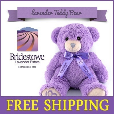 Lavender Bear Microwavable Heat Pack Teddy Bear/Birthday Gift