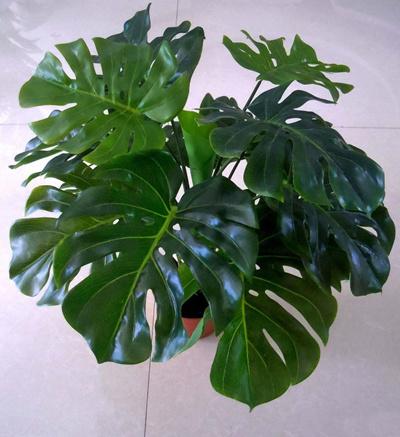 qoo10 - faux monstera plant : furniture & deco Artificial Plants Indoor Decoration