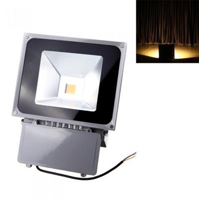 70w 110 250v Led Spot Light Ip65
