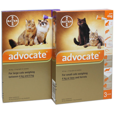 Qoo10 Advocate For Cats Pet Care