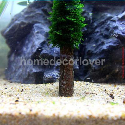Qoo10 - Aquarium Simulation Moss Christmas Tree Plant Grow Fish Tank Decoratio... : Pet Care