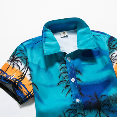 362635907f3 authentic Mens Hawaii Shirt For Summer Beach Leisure Fashion Floral Tropical  Seaside Hawaiian Shirts