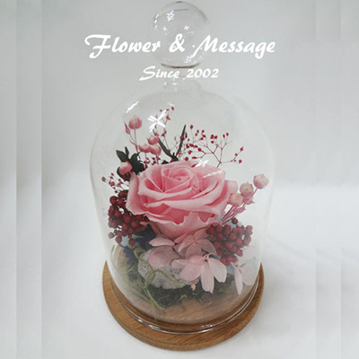 Baby Pink Preserved Flower Never Withered Rose In A Gl Dome Special Day Gift