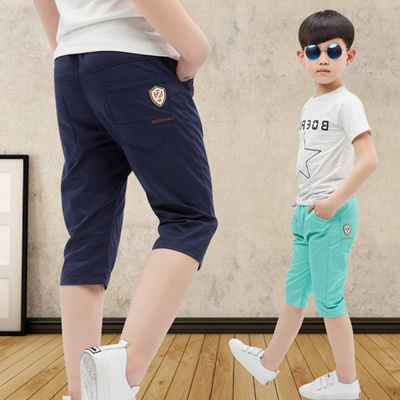 050bea5c86b8 Qoo10 - Boys summer shorts children s casual wear pants in 2016 Summer child...    Kids Fashion
