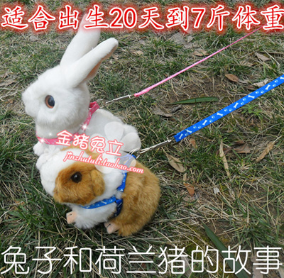 Qoo10 bunny rabbit guinea pig leash walking traction rope traction bunny rabbit guinea pig leash walking traction rope traction rope rope in rabbit guinea pig rabbit publicscrutiny Gallery