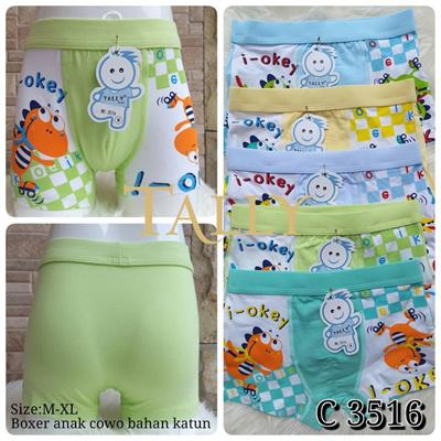 Qoo10 - CD Celana Dalam Anak Cowok Pants Dino TALLY 3516   Pakaian Anak eb86ccb87c
