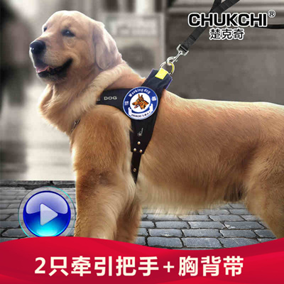 768965354.g_400 w_g qoo10 chukchi large dogs chest harness leash set dog chain rope