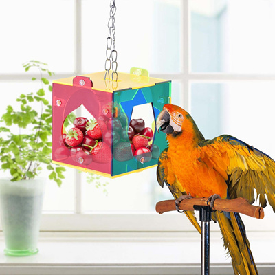 Colorful Acrylic Parrot Cage Pet Treat Macaw Cockatoo Bird Hang Foraging  Feeder Toys Set