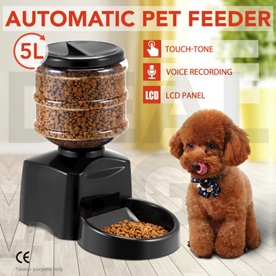 this several read your s catfood accomplish up dispenser eats easily one looking day feeders week andino accommodate times cat worth then mundo a there if that task are can first to of food those feeder buy