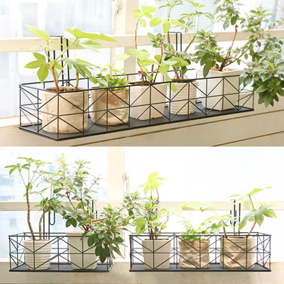 Qoo10 Plant Display Stand Tools Amp Gardening