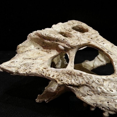 Qoo10 Crocodile Skull Terrarium Decor For Reptile Terrarium
