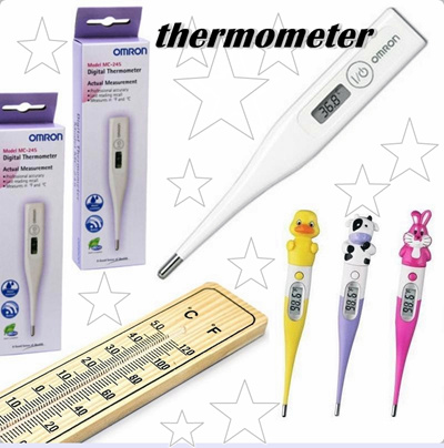 Qoo10 - Digital thermometer / Digital Thermometer / thermometer chamber / Ther... : Bedding / Rugs /.