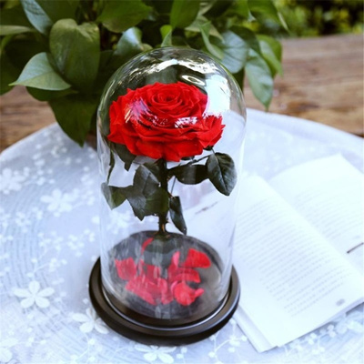 Eternal Preserved Fresh Rose Flower Beauty Real Natural Red Roses Flowers  Glass Cover Christmas Gift