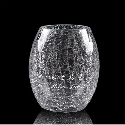 Qoo10 Floral Ice Crack Glass Vasemilanaquarium Hydroponics