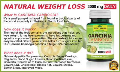 Garcinia Cambogia Extract 95 Hca Natural Appetite Suppressant Weight Loss Fat Burner 60 Capsules