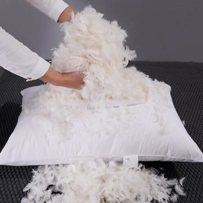 Qoo10 - High quality Feather Pillow/100% White Goose ...