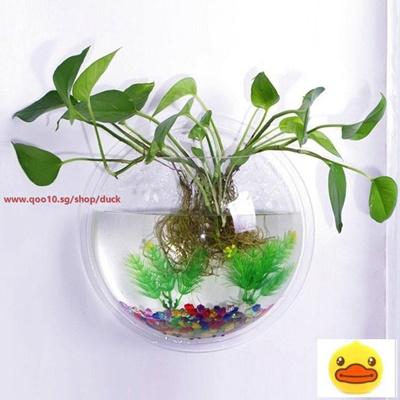 Bellagione Wall Hanging Fish Bowl Fish Tank Water Plant Vase Mini