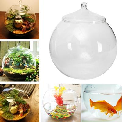 Qoo10 Large 20cm Glass Terrarium Container Bell Jar Miniature
