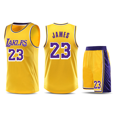 quality design 718bc e1b69 LeBron James Los Angeles Lakers Jersey(yellow black purple)