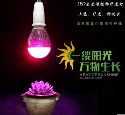 LED plant growth fill light fleshy lighting bulb flower water grass nursery  orchid indoor technology