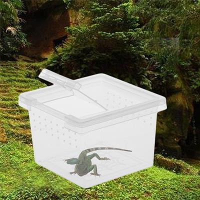 Qoo10 Mini Portable Plastic Transparent Terrarium Reptile Lizards