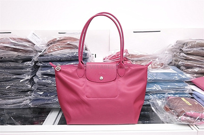 NEO SMALL LONGCHAMP x AUTHENTIC . BRAND NEW x LONGCHAMP NEO SMALL  a1ce4c1954220