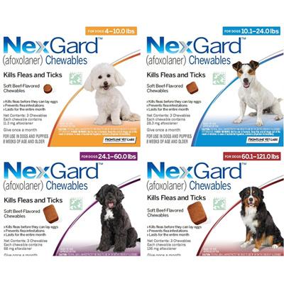 Qoo10 Nexgard Dog Chews Pet Care