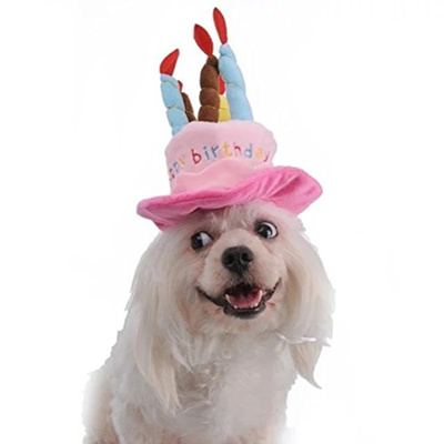 NUOLUX Pet Birthday HatPet Costume Dog Hats Accessory For Dogs